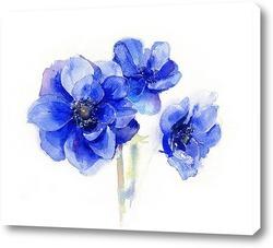Синие цветы Анемоны