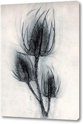Постер Сухоцвет