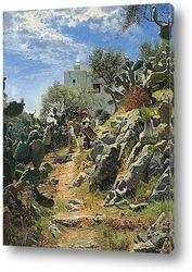 Постер В полдень плантации кактуса в Капри