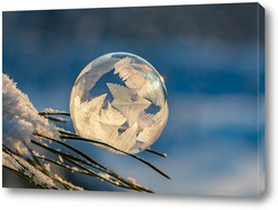 Постер Замёрзший  мыльный пузырь