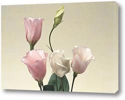 Постер Flower383