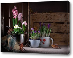 Постер Маленькая весна