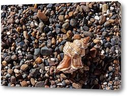 Постер Утро на море
