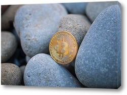 Постер Биткоин среди камней