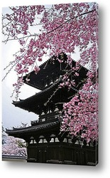 Постер Japan-13010901