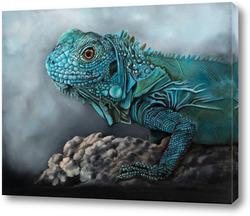 Постер Голубая Игуана