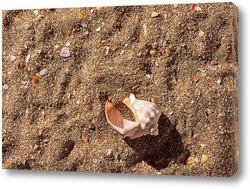 Постер Утренний пляж
