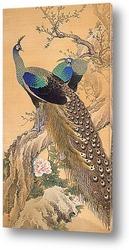Постер Пара павлинов весной