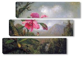 Модульная картина Орхидея и колибри возле горного водопада, 1902