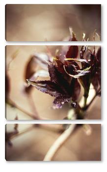 Модульная картина Цветение листыв №4