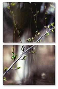 Модульная картина Цветение листыв №3