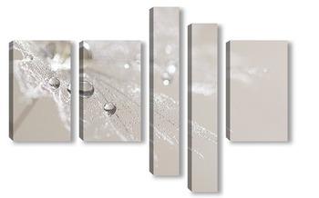 Модульная картина Серебристые капли на одуванчике.