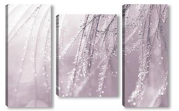 Модульная картина Перья с каплями воды. Макро перьев.