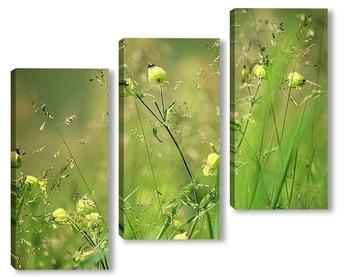 Модульная картина Луговые травы