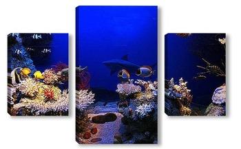 Модульная картина Coral015
