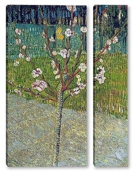 Модульная картина Миндальное дерево в цвету