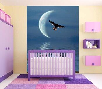 Фотообои Орел в небе